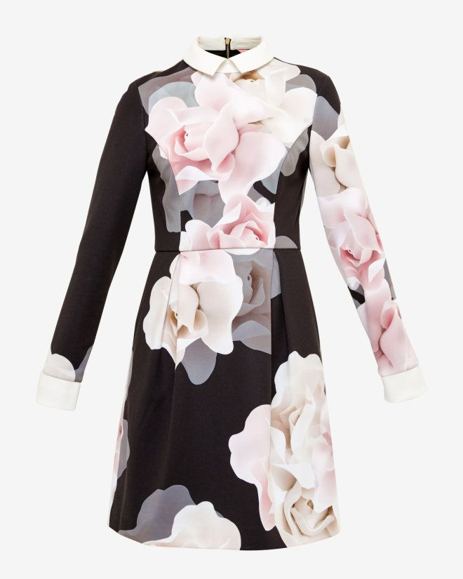 Porcelain Rose collared dress - Black | Dresses | Ted Baker