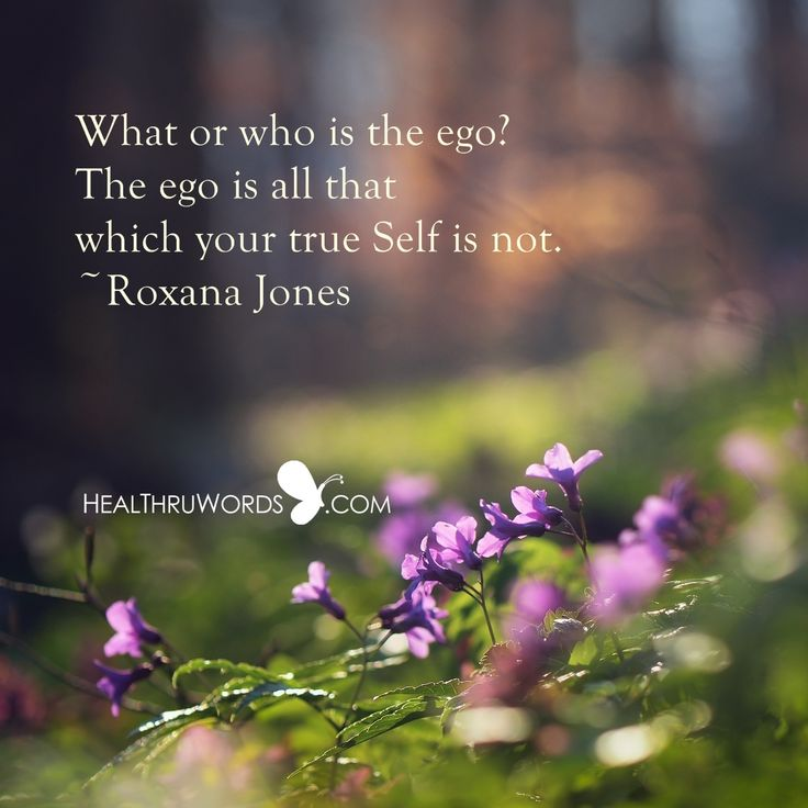 what or who is the ego the ego is all that which your