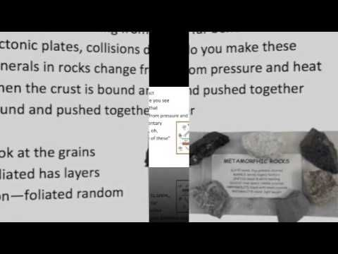 Ecology Song - YouTube. Hopefully this will help you remember so concepts of ecology.