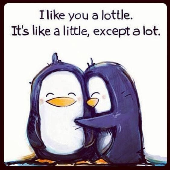 "Every Friday we provide you a quote which you can take and share with your significant other OR retype into a text and send it to her.  ""I like you a lottle. It's like a little except a lot.""  Start your weekend off strong!"