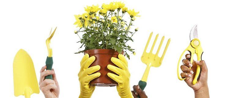 Hiring a gardener is not the same as hiring a house cleaner, says 'No Guff Gardener' Donna Balzer.