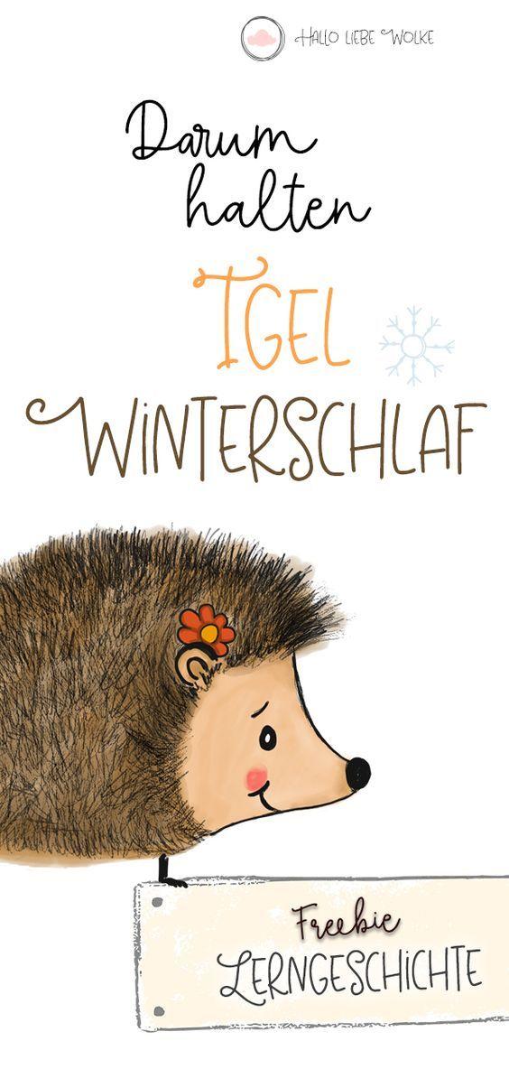 Igel Isi und Winterschlaf (Geschichte & Printable)   – Für Kinder