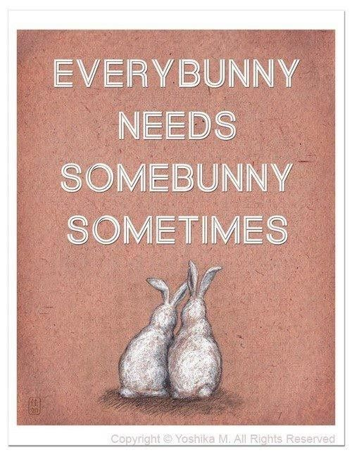 Thanks for helping today. Honey Bunny, Sunny Bunny, and Runny Bunny helped. Or was it Funny Bunny?