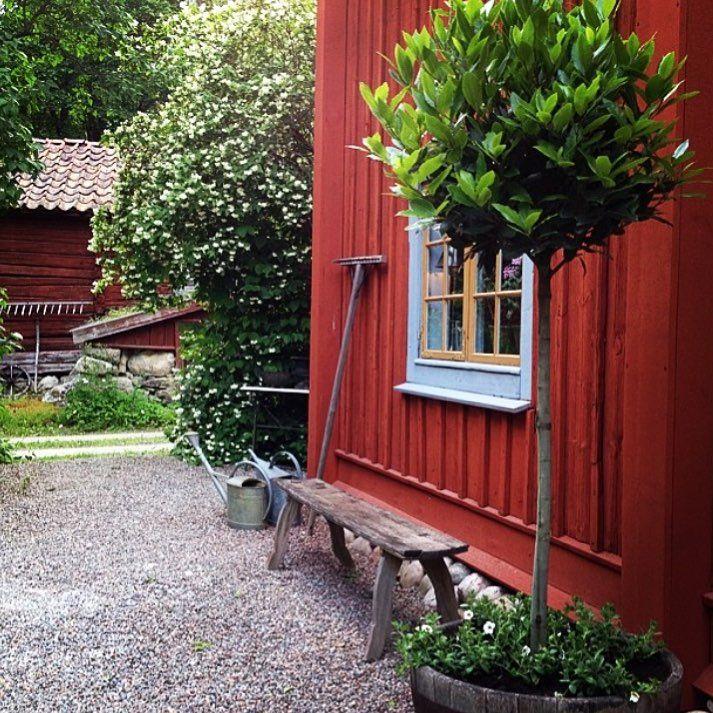 Älskar grus! När vi gör om trädgården i sommar blir det lite gräs och mycket grus och breda prunkande rabatter. Och stora urnor stående i gruset med massa fina sommarblommor. Bild från @perolofjerner fantastiska trädgård!