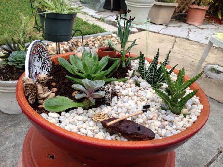 92 Best Images About Terrarium Mini Cactus Gardens On