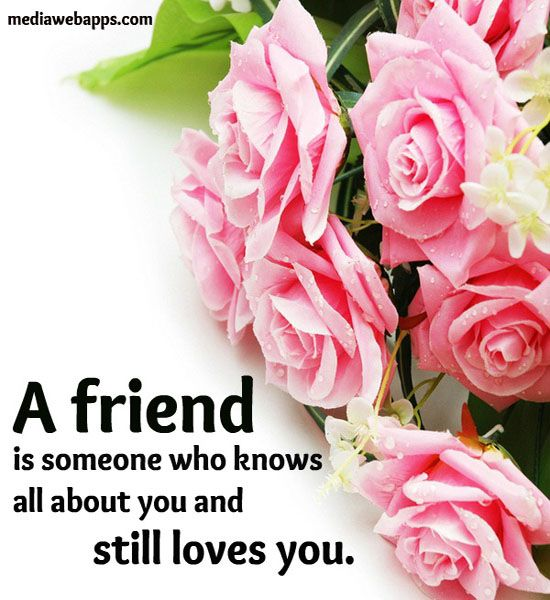 27 best Friendship images on Pinterest | Friendship, Friend quotes ...