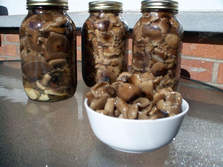 10 заготовок из ГРИБОВ на зиму   1. Засолка грибов - холодный способ.  грибы…
