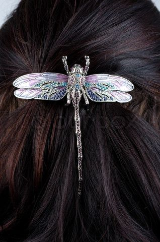 http://www.colourbox.com/preview/2170409-729378-woman-coiffure-with-dragonfly-hairpin-close-up.jpg