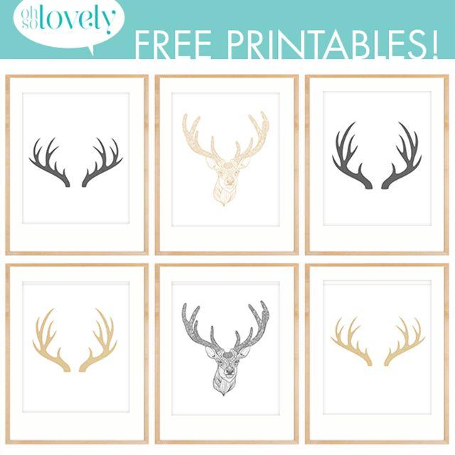 Oh So Lovely: Antler Decor + Free Antler Printables