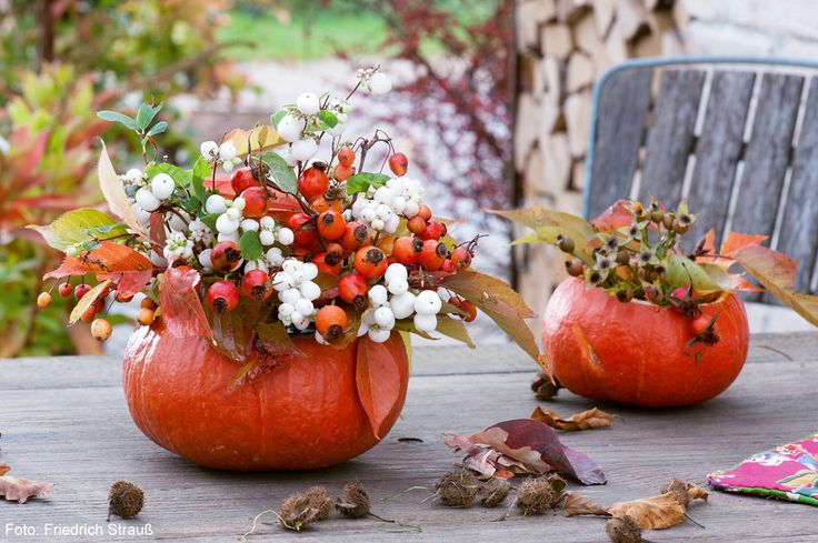 Zwei ausgehöhlte Hokkaido-Kürbisse als Vasen, gefüllt mit verschiedenen Beerenschmuck-Zweigen