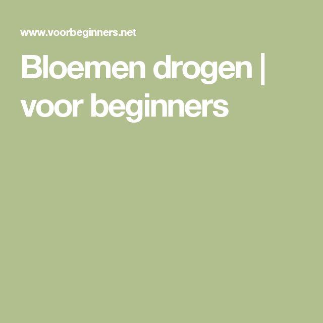Bloemen drogen | voor beginners