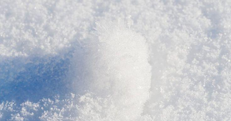 ¿Cuál es el significado del efecto de bola de nieve?. El efecto de bola de nieve describe lo que ocurre cuando algo pequeño o insignificante gana impulso y rápidamente llega a ser grande y más significativo. La analogía más común utilizada en esta situación es cuando una pequeña bola de nieve rueda por una colina, ganando no sólo velocidad, sino también área superficial. Los resultados de este efecto ...
