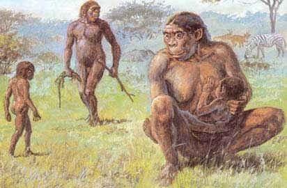 Nuestros orígenes en busca de lo que nos hace huma...