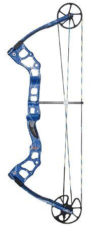 Manta Ray Bowfishing bow.