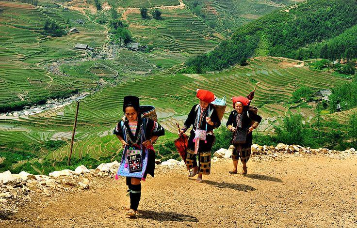 Découvrez les sites immanquables de la région nord du Vietnam, région aussi appelée Tonkin. Visitez la capitale Hanoi, la charmante vallée de Mai Chau, le parc national de Cuc Phuong, ainsi que Ninh Binh, Tam Coc et sa Baie d'Halong terrestre.