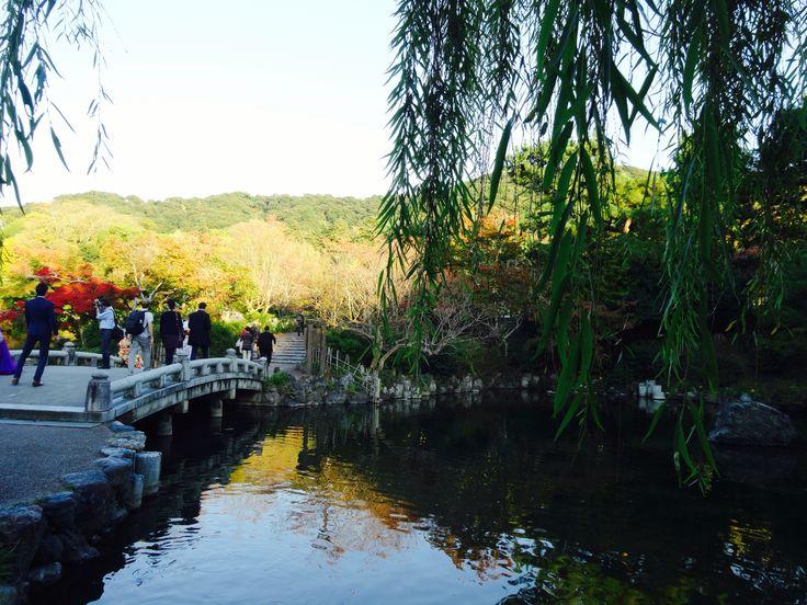 円山公園 - Maruyama Park