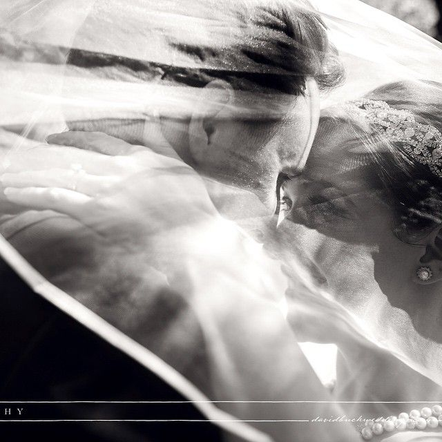 Steve & Carly's wedding #wilsonfabokwedding #weddingphotographer #weddingphotography #torontoweddingphotographer #torontophotographer #torontowedding #torontoweddingphotographer #torontobride #photography #picoftheday #photooftheday