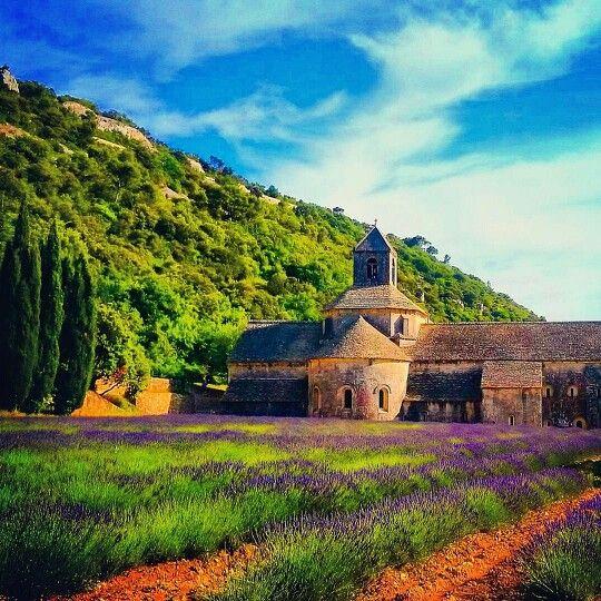 Senanque Abbey, Provence. France