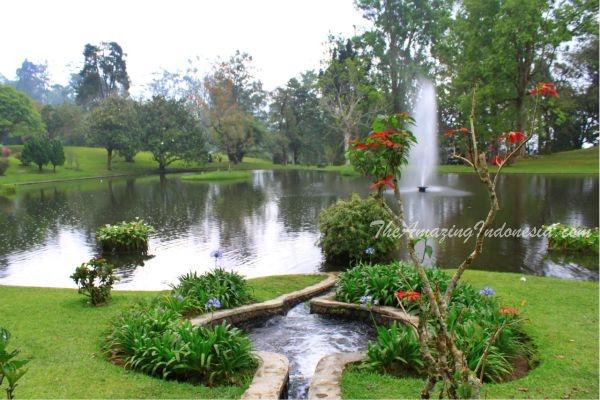 Cibodas Garden, Indonesia