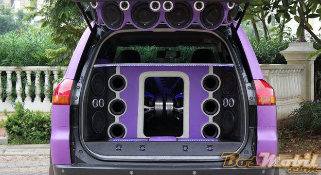 Bass Bin Box - Venom Fighter
