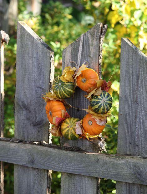 Herbstlicher Kranz aus verschiedenen Zierkürbissen. Macht nicht nur draußen eine gute Figur. (Foto. MSL/G. Knapps)