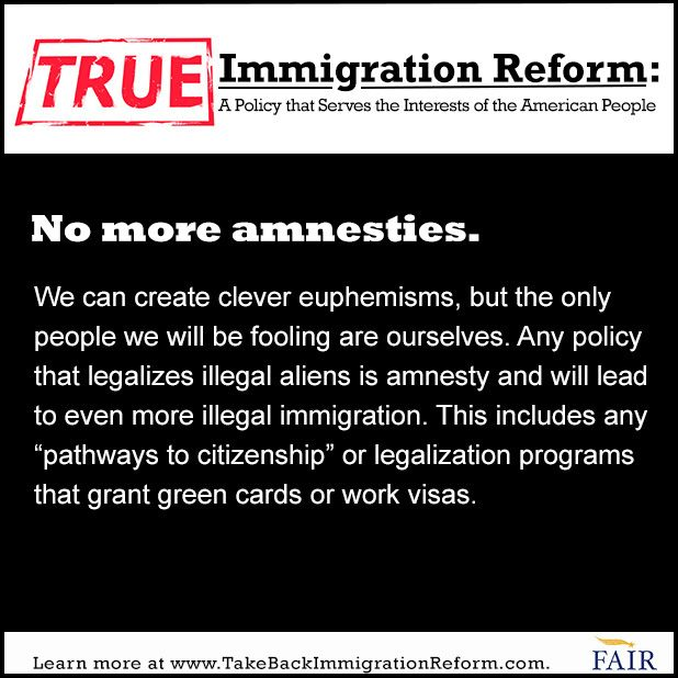Essays on immigration reform