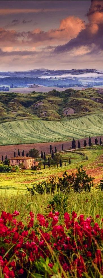 Tuscany...algun dia!!                                                       …
