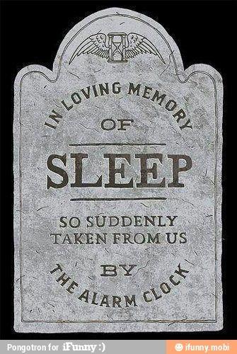 R.I.P.Laugh, Funny Pics, Alarm Clocks, Quotes, Funny Humor, In Love Memories, Mondays Mornings, So True, Sleep
