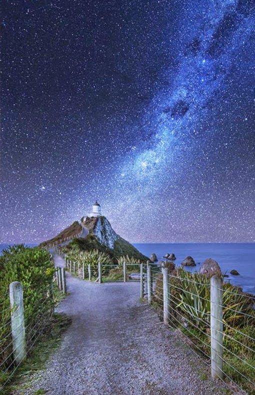 10 Most Amazing Places to Visit in New Zealand