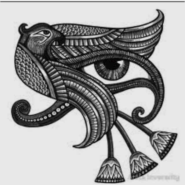 My hawk tattoo