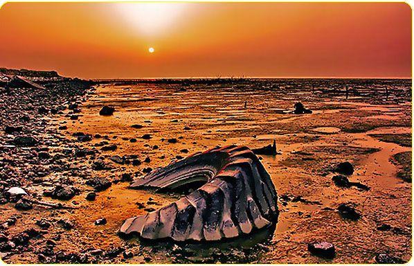 Environmental Destruction, Kuwait, Sulaibikhat Beach ...