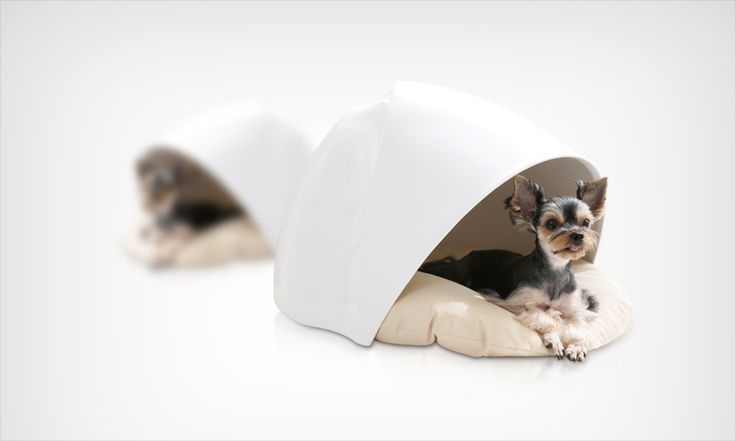 Luxury House For Pet