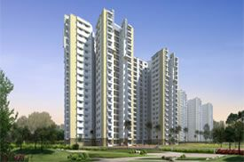 As Delhi one of the most developed cities, we have enlisted hundreds of lavish and luxurious properties in Delhi ready to be reviewed by you. Make side by side comparisons and take the right decision when it is about investing your hard earned money.Than Visit Us : http://www.proptalkies.com/property-city-in+dl+c00001-delhi