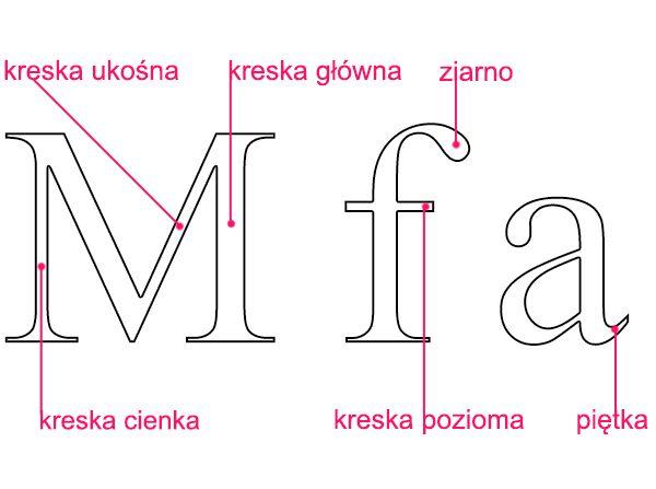 kreska cienka, ukośna, główna, pozioma; ziarno, piętka - Liternictwo i typografia