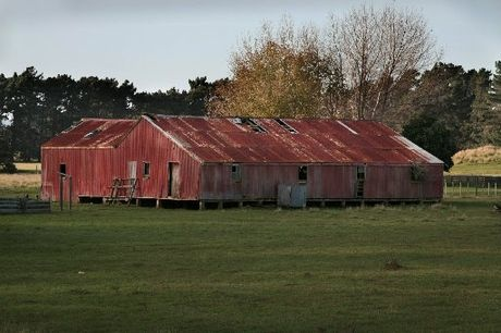 Old wool shed.