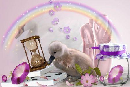 Little Ballerina - rainbow, swan, pink, ballerina, duck, flower