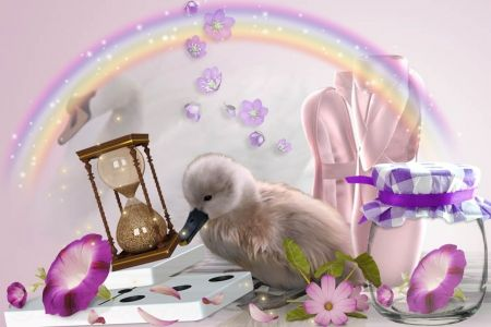 Little Ballerina - rainbow, swan, pink, ballerina, duck, flower