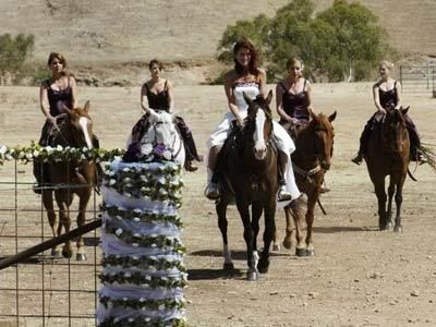 McLeod's Daughters - McLeod's Daughters If u have to marry this is the way to do it xS