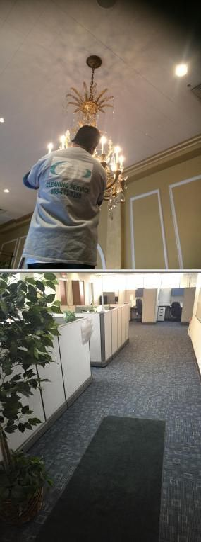 Bloomingtree Facility has more than 8 years of experience in janitorial cleaning services. They also offer trash pickup and removal services. Chicago based disposal service: click for reviews and photos!
