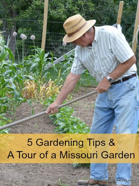 5 gardening tips and a tour of my dad 39 s garden gardens dads and my dad - Organic gardening practical tips ...