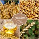 Informatie over plantaardige olien voor aromatherapie recepten