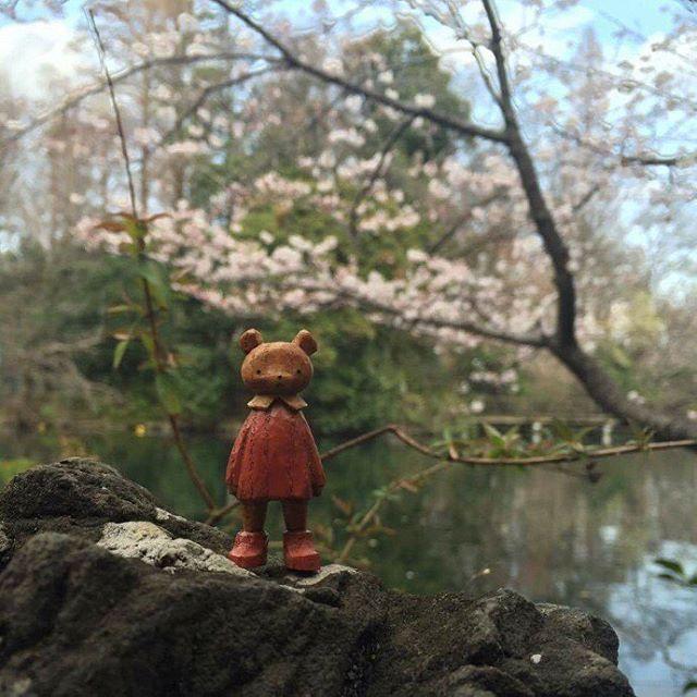 井の頭公園も人が沢山お花見してました。    #mokko_kumakichi #木工くま吉 #woodcarving #木彫り #木彫 #handmade #ハンドメイド  #figure #doll #井の頭公園 #花見