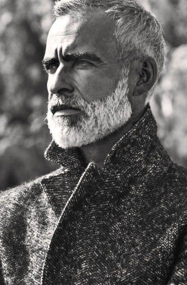 grey beard - Google Search