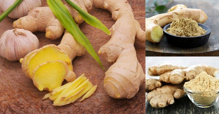 Ginger: The Complete Herbal Wonder Medicine