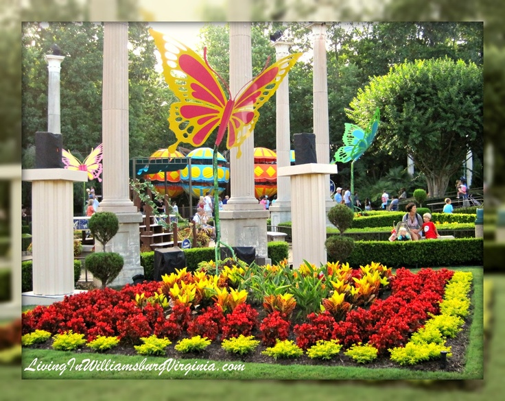 28 best Busch Gardens images on Pinterest | Brochures, Parks and ...