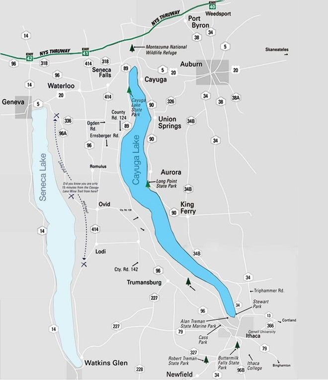 This is a tourist trail map covering the cayuga lake wine for Cayuga lake fishing