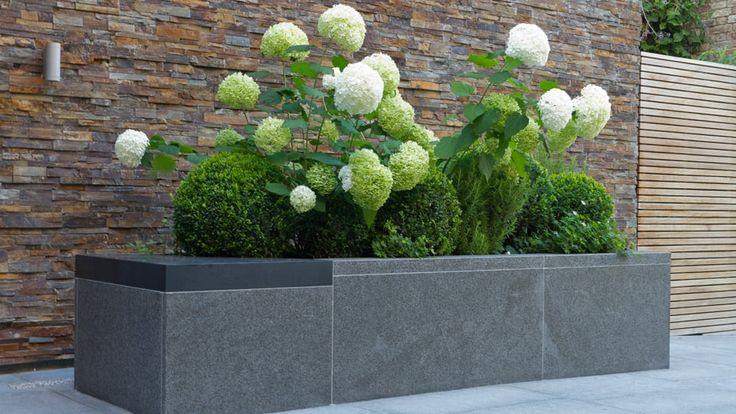 Parcourez les images de Jardin de style de style Moderne de Paul Marie Creation. Inspirez-vous des plus belles photos pour créer votre maison de rêve.