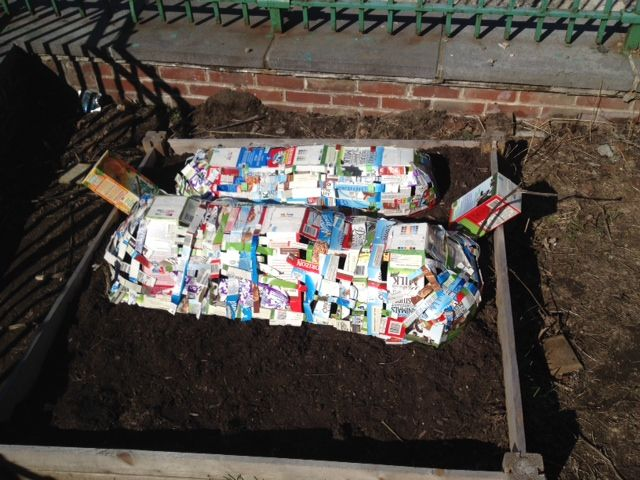 "High School students at Marie Curie School wove together large and small cartons to build a ""hoop garden"" cover to protect seedlings from the cold. They were a 2014 #Cartons2Gardens High School Winner! www.carton2garden.com"