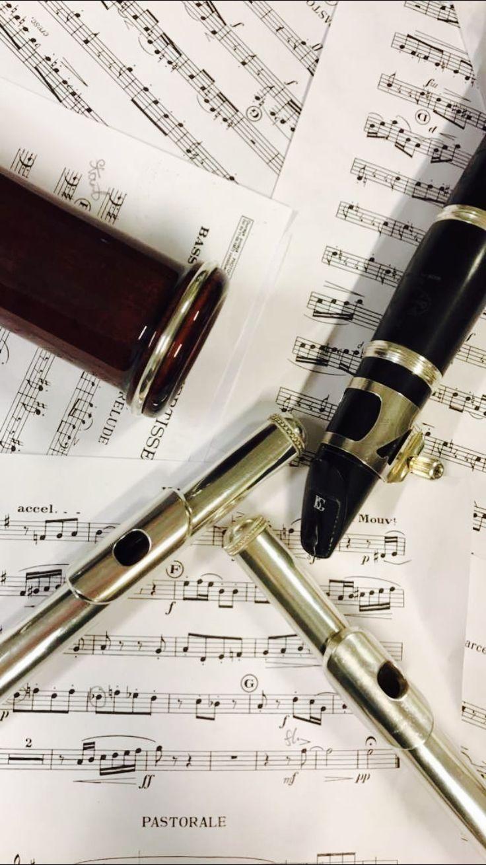 #bassoon #flute #clarinet #music #classical #notes #life #joy #hobby