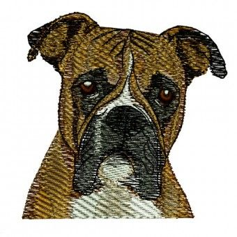 Boxer Embroidery Design Dog Puppy